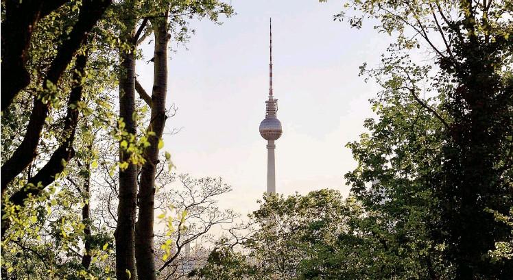 ?? Foto: Photocase/napri ?? Die urbane Flora und Fauna soll den Berliner*innen durch ein neues Projekt nahe gebracht werden.