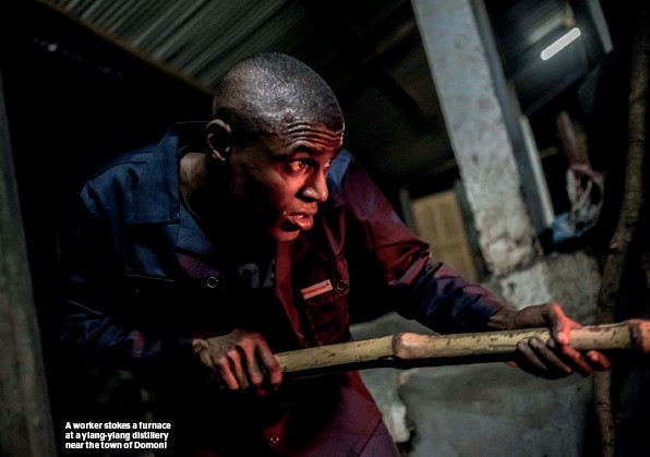 ??  ?? A worker stokes a furnace at a ylang-ylang distillery near the town of Domoni