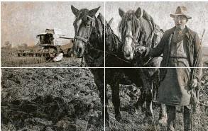 ??  ?? WAS PASST NICHT AUF DIESEM BILD? – Dieses Foto sendete uns Maria Köpf aus Halblech. Es wurde im Bayerischen Wald in den 30er Jahren aufgenommen.