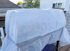 ?? ERIN SULLEY PHOTO ?? Frost coverings keep out cabbage moths and moisture while protecting your plants.