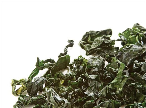 ?? (COLLINSCHIN) ?? «Les algues et certaines microalgues offrent un énorme potentiel, largement inexploité», estime la cheffe Alicia Rico.