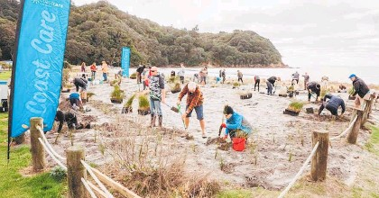 ?? Photo / Bay of Plenty Re­gional Coun­cil ?? Vol­un­teers help plant na­tive sand dune plants at Waihi Beach ear­lier this year.