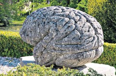 ??  ?? This unique 20th-century sculpture of a brain was created by Massimo Sarantonello