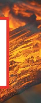??  ?? El incendio de abril en Tepoztlán, Morelos, es considerado el más grande de este siglo. Afectó más de 310 hectáreas de un paraje. TEPOZTLÁN, MORELOS