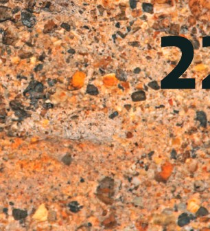 ??  ?? 1. Uno de los murciélagos que habita en las cuevas de la reserva Mana Dulce en Agua de Dios. 2. Petroglifos tallados por los panches cerca de la laguna Salcedo en Apulo. 3. Cascada El Tambo, incrustada en la vegetación nativa de Tena.