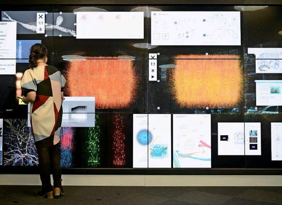?? Foto: Laurent Gillieron (Keystone) ?? Eine Schautafel des Human-brain-projekts der ETH Lausanne, das von Eu-förderprogrammen profitierte.