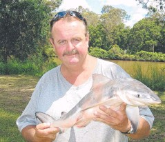 ??  ?? GOOD EATING: Bruce Chalmers with a typical Logan River bull shark. It may be small but still packs a punch.