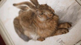 """??  ?? Dürer's world renowned painting, """"Young Hare"""" (1502)"""