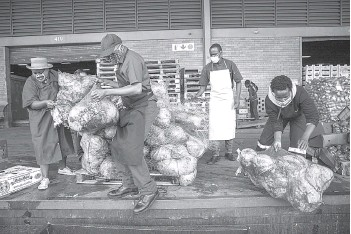 ??  ?? Chefs with Compassion volunteers Zizwe Kheswa (centre left), Donald Maike (centre right) load in a pick-up truck a pallet containing discarded cabbages to be rescued at the City Deep Fresh Product Market in Johannesbu­rg.