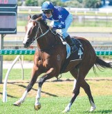 ??  ?? Fender scores an easy win at Doomben. Picture: Trackside Photography