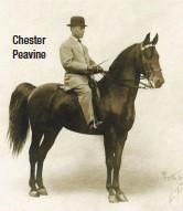 ??  ?? Chester Peavine