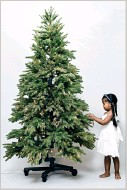 Balsam Hill S 7 Foot Silverado Slim Flip Tree Priced At 899 Arrives In Two Pieces The Lower Portion Up And Branches Spread