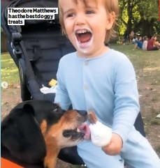 ??  ?? Theodore Matthews has the best doggy treats