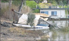??  ?? ■ A large eucalyptus tree branch crushed a small boat moored near McLean Beach.