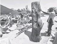 ?? — Gambar Bernama ?? PERIKSA: Mohd Zalizi memeriksa kayu terbuang yang dibeli daripada penduduk untuk dijadikan arca ketika ditemui Bernama di G Landskap di Jalan Pasir Mas- Rantau Panjang, baru-baru ini. Berpengalaman lebih 10 tahun dan mahir dalam bidang landskap dan industri perkayuan mengakui arca kayu dan perabot kayu terbuang mempunyai corak (air kayu) semula jadi yang menjadi tarikan kepada pelanggan yang meminatinya.