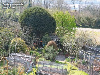 ??  ?? Geoff's garden provides plenty of cover