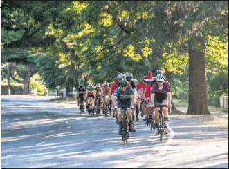 ??  ?? LIFE CYCLE: Alpine Shire Council is seeking community input into the best way to manage and replace the trees that line the streets of local towns as they reach the end of their life. This image of Bright's 2019 Christmas Ride is by Jean-Pierre Ronco, of Image Writer.