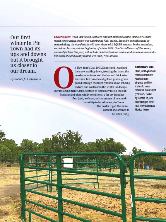 """??  ?? RAINBOW'S END: Chief, a 31-year-old retired endurance Arabian from Virginia, and the Icelandic mare Gloria fra Gauksmyri (""""Gloria""""), ridden by Bobbie Jo, are flourishing in their high-elevation New Mexico home."""