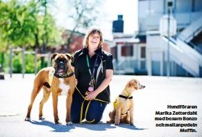 ??  ?? Hundföraren Marikazetterdahl med boxernbonzo och mellanpudeln Muffin.