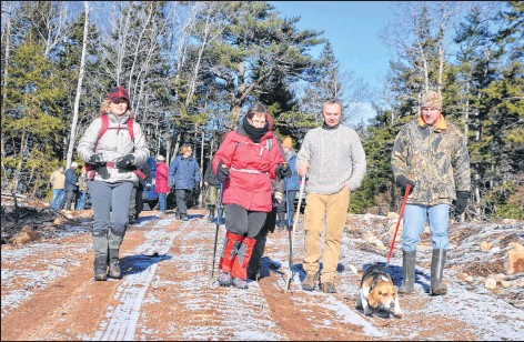 ?? LAWRENCE POWELL ?? There were 18 concerned residents from across Annapolis County at two parcels of crown forest south of Bridgetown on Boxing Day. They wanted to see firsthand what the two plots up for possible harvest looked like. To their surprise they found a new logging road already in place.
