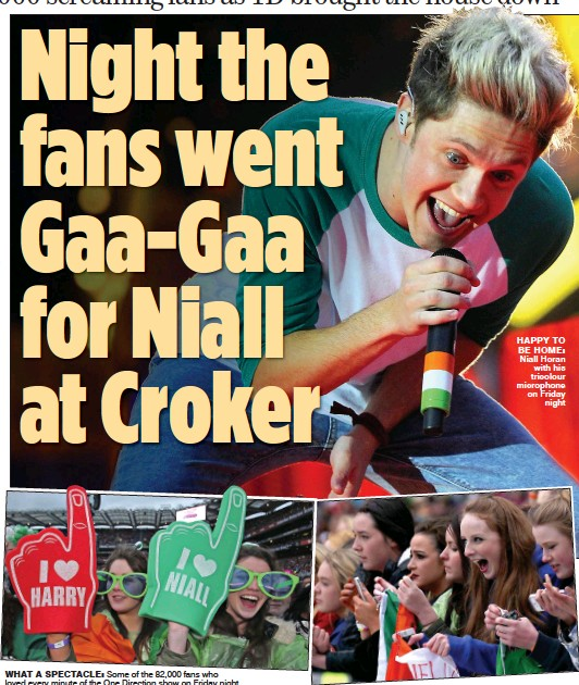 ??  ?? what a spectacle: Some of the 82,000 fans who loved every minute of the One Direction show on Friday night happy to be home: Niall Horan with his tricolour microphone on Friday night