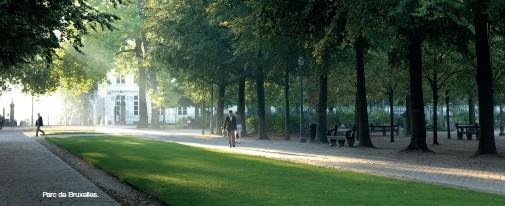 ??  ?? Parc de Bruxelles.