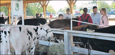 ??                                ?? A new livestock shelter behind the Kings Mutual Century Centre in Berwick was opened during 4-H Achievement Days Aug. 5.