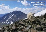 ??  ?? Atlantic Peak is goat country.