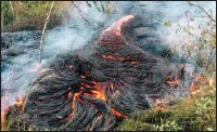 ??  ?? Lava flow burns vegetation near the town of Pahoa on the Big Island of Hawaii. The Hawaii National Guard is deploying troops to a rural Hawaii town as lava makes a slow crawl toward a major road and threatens to further isolate the community that got...