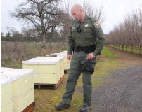 ??  ?? Sheriff Rowdy Jay Freeman now has a personal passion for bees.