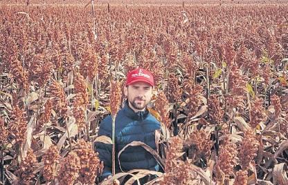 ??  ?? Director. Luis Alberto Rodríguez lidera una firma que hace agricultura, ganadería y vende insumos y servicios