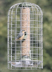 ??  ?? Ultimate Guardian and seed feeder
