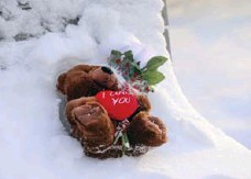 ?? ANDREW FRANCIS WALLACE/TORONTO STAR ?? A stuffed toy bear rests on a bench near where Camila Torcato was killed.