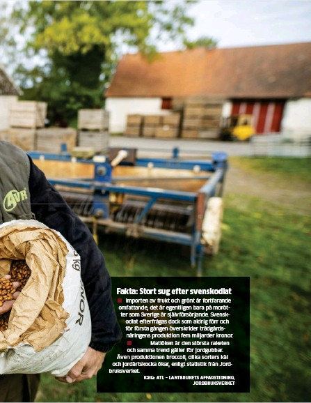 ?? Källa: ATL – LANTBRUKETS AFFÄRSTIDNING, JORDBRUKSVERKET Bild: SUVAD MRKONJIC/TT ?? odlar bönor som blir allt mer populära.