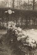 ??  ?? ■ Manfred von Richthofen's flower bedecked grave.