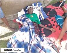??  ?? GOGO Dembo