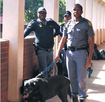 ??  ?? Police often conduct drug and weapon raids at Richards Bay schools