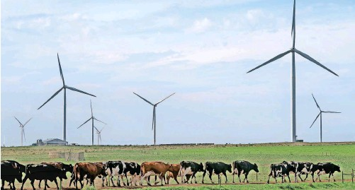 ??   DAVID RITCHIE African News Agency (ANA) ?? THE Kouga Wind Farm, situated 70km south-west of Port Elizabeth, is a renewable energy project that delivers 80 megawatts of grid-connected capacity in the quest to power the country's low-carbon future.