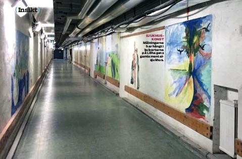 ??  ?? SJUKHUS KONST Målningarna har hängt i kulvertarna på Lillhagens gamla mental sjukhus.