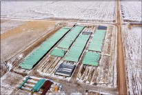 ?? AP FILE PHOTO ?? In this Dec. 18, 2020 photo, pipes to be used for the Keystone XL pipeline are stored in a field near Dorchester, Neb.