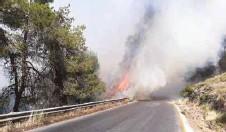 ??  ?? حريق في إحدى غابات محافظة جرش