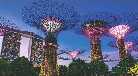 ??  ?? ABOVE The huge steel Supertrees of Singapore's Gardens by the Bay