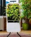 ??  ?? You will not forget about your houseplants when they're attached to Respira's imposing appliance – but you won't need to water them yourself, either.
