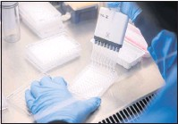 ??  ?? A researcher at Oxford's Jenner Instituteworks on the vaccine, which can be stored at refrigerator temperatures.