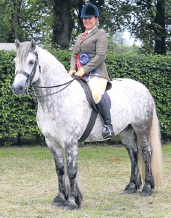??  ?? Magic: Dunedin Merlin took the HOYS ticket for Lindsey Macdonald for the second year in succession.