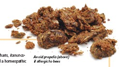 ??  ?? Avoid propolis ( above) if allergic to bees