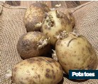 ??  ?? Potatoes