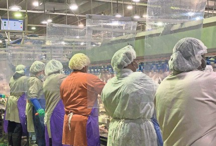 ?? TYSON FOODS ?? Tyson Foods has installed plastic barriers between worker stations at its meat and poultry plants to protect against transmission of the novel coronavirus. But some say the safety measures are too little, too late.