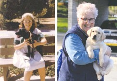 ?? COURTESY OF MARYBETH HEARN/ASSOCIATED PRESS ?? A 10-year-old Marybeth Hearn holds her first guide-dog trainee in 1962 and more than 50 years later, right, holds another. Hearn has raised 56 dogs to assist blind people by training them, for example, to walk with a leash.