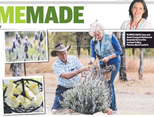 ??  ?? PUR­PLE HAZE: Gary and Anne Young at Holm­wood laven­der farm in the Lock­yer Val­ley. Pic­ture: Mark Cranitch